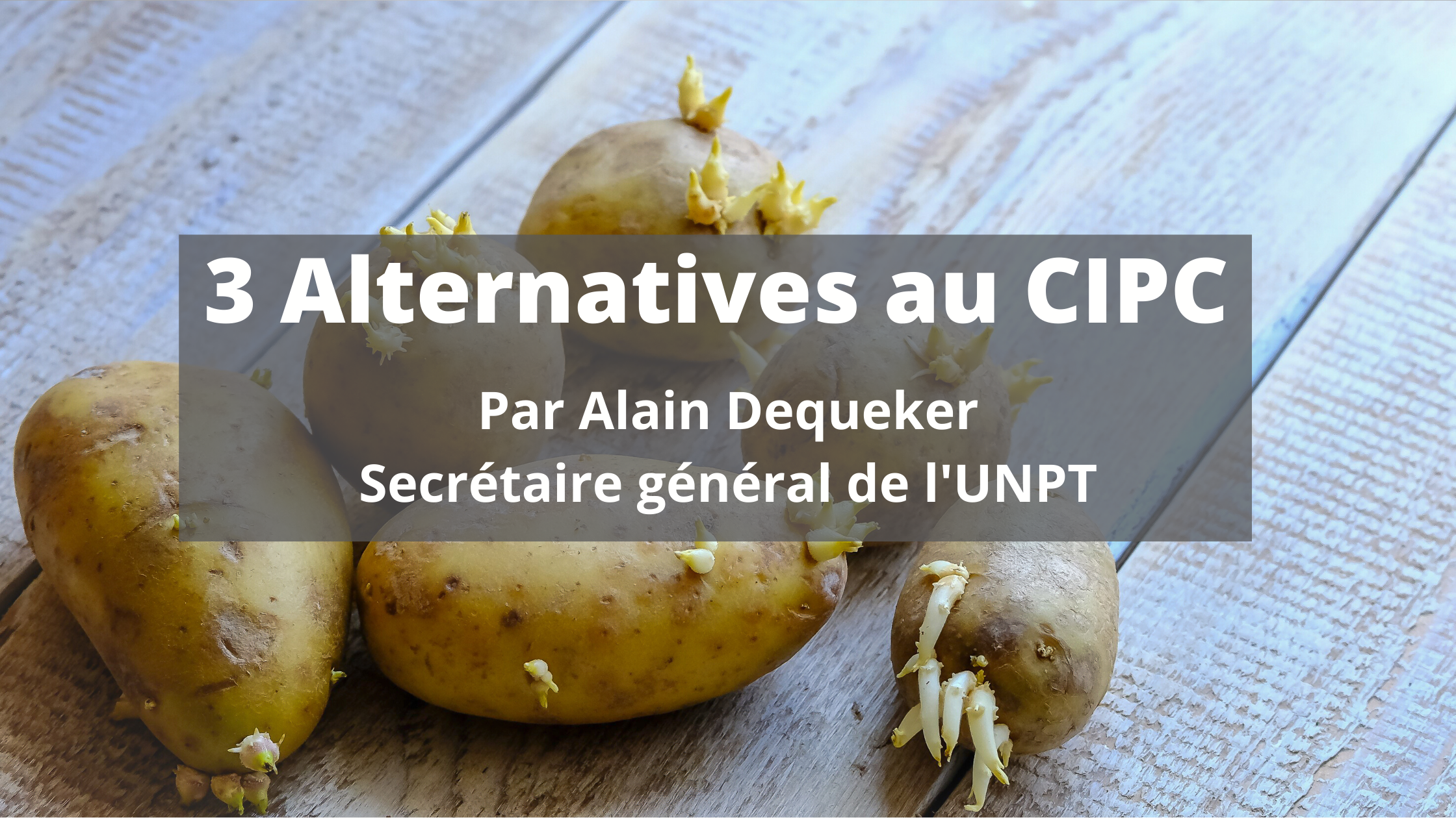 3 Alternatives au CIPC