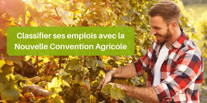 Comment classifier vos emplois avec la Nouvelle Convention Agricole ?