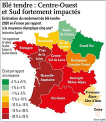 Estimatiion des rendements blé tendre 2020 en France