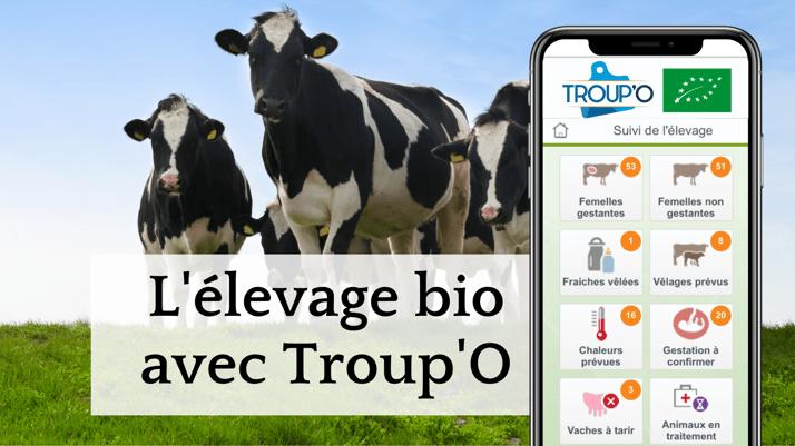 Troup'O facilite la gestion des élevages bio