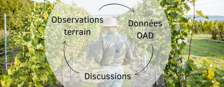 viticulteur-equilibre-terrain-outil-aide-a-la-decision