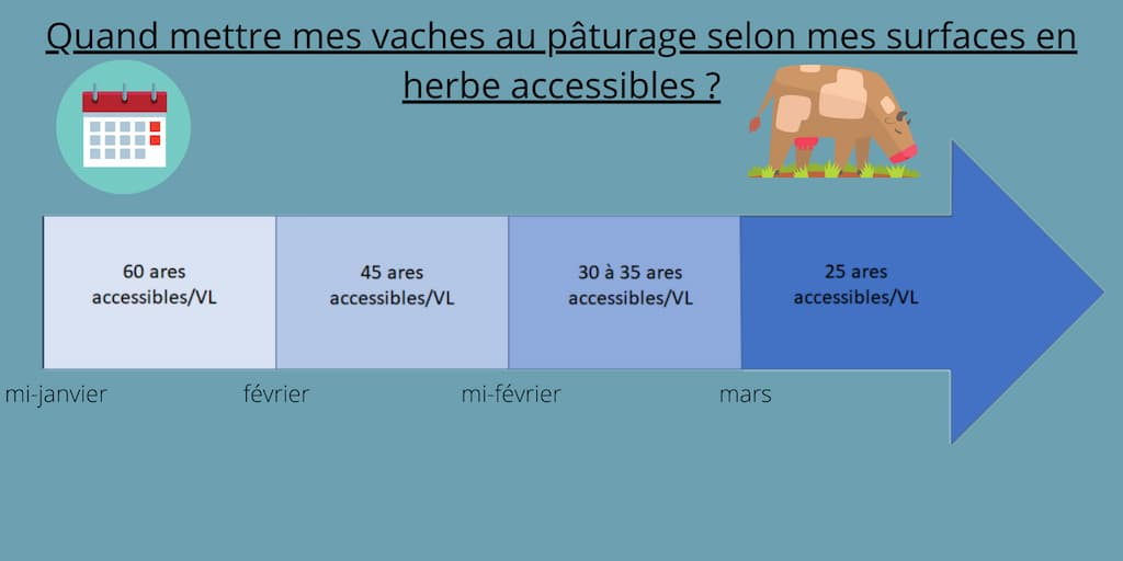 Quand mettre mes vaches au paturage selon mes surfaces en herbe accessibles ?