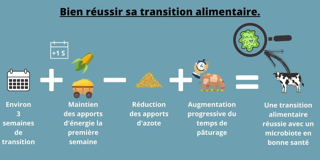 Bien reussir sa transition alimentaire