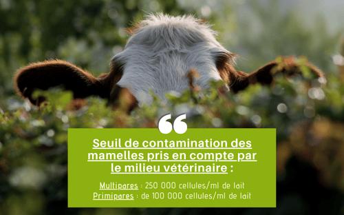 Seuil de contamination des mamelles pris en compte par le milieu vétérinaire - TroupO