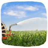 ISAGRI - 1920 - Irrigation Maïs