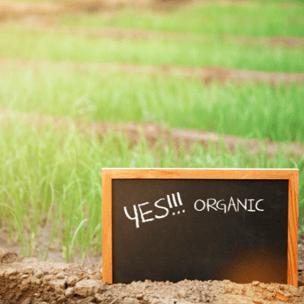 anticiper la période de transition vers agriculture biologique