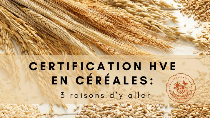 Certification HVE en Céréales : 3 raisons d'y aller