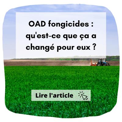Article de blog à lire : découvrez les OAD fongicides