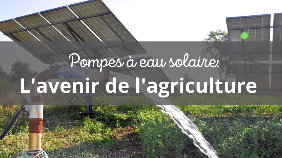 Pompes à eau solaire, l'avenir de l'irrigation agricole