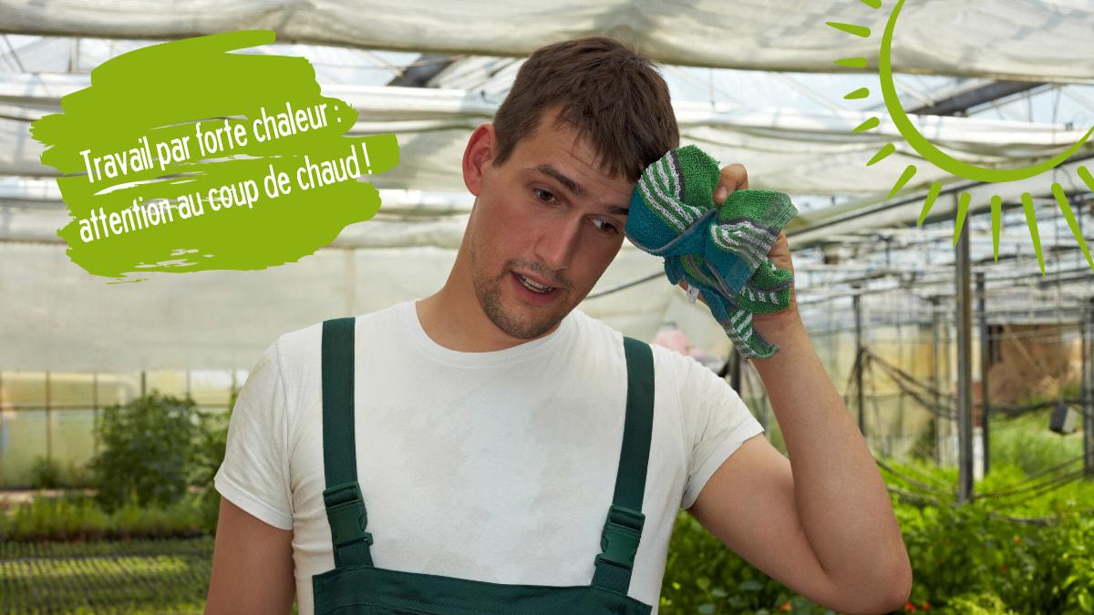 employeur agricole, vous avez une obligation de sécurité face aux travailleurs agricoles, en cas de fortes chaleurs. Pensez à la prévention des risques et à indiquer les mesures prises dans le document unique