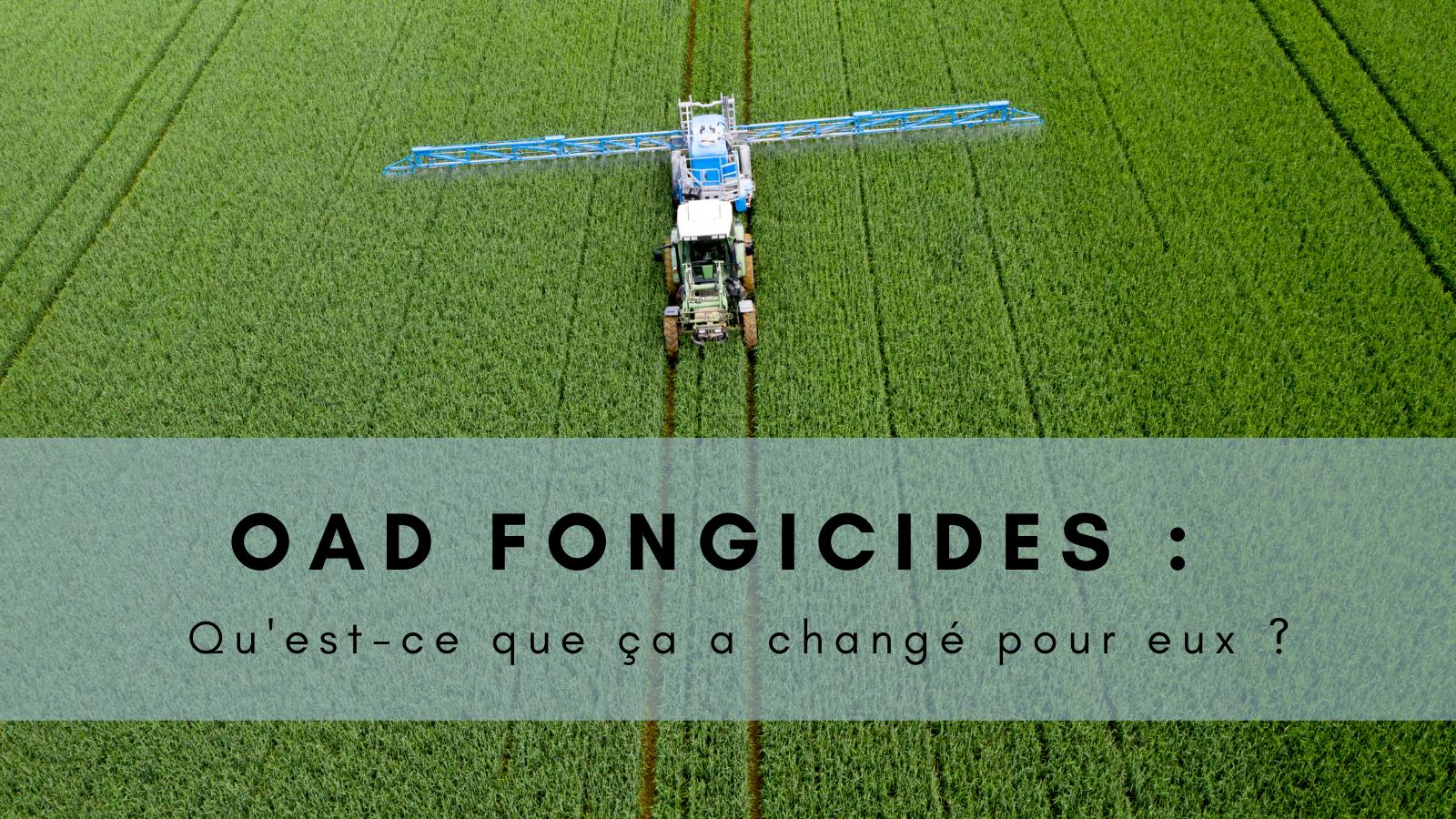 OAD fongicides : qu'est-ce que ça a changé pour ces agriculteurs ?